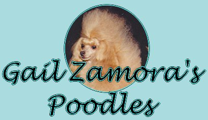 Gail Zamora's Poodles - Toy Poodle Puppies for Sale